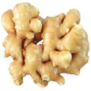 Ginger P.E.